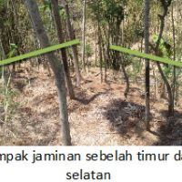 PNM Prob: sebidang tanah luas 1.602m2, terletak di Desa Wedusan, Kec.Tiris Kabupaten Probolinggo