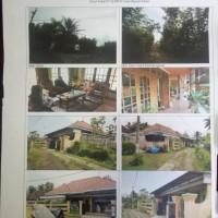 Tanah & Bangunan luas 599 m2 SHM No. 219 di Ds. Rejosari, Kec. Bantur, Kab. Malang