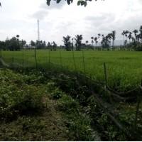 BPD Sumbar (a) Sebidang tanah pertanian  sesuai SHMNo. 1690, LT 10.000m2 terletak di Kel Sungai Sapih Kec.Kuranji Kota Padang