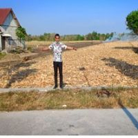 Tanah seluas 4.872 m2, sesuai SHM No. 121 dan SHM No. 122, terletak di Desa Supenuh, Kecamatan Sugio, Kabupaten Lamongan