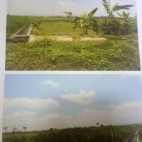 Sepaket T dan B, SHM No. 707 luas 182 m2 & SHM No.86, luas 1.720 m2 keduanya di Ds. Bululawang, Kec. Bululawang, Kab. Malang.
