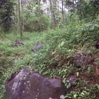 BRI Kuningan: SHM No. 358 luas tanah 5.148 m2 terletak di Blok Munjul Cabe Desa Karangmuncang, Kec. Cigandamekar, Kab. Kuningan