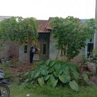 3. BTN melelang satu paket tanah seluas 81 m² dan 39 m² di Kompleks Perumahan Villa Sentosa Indah, Eka Jaya, Jambi Selatan