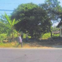 Kurator PT.Puhan I (Dalam Pailit); 1 bidang tanah, SHM No.708 seluas 2.030 M2 terletak di Desa Tegalsari, Kec.Karanggede, Kab.Boyolali