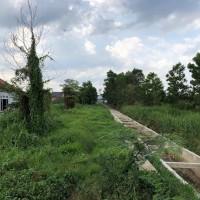 Sebidang tanah seluas 1.984 M2 (SHM No.660) di Jalan Untung Suropati, Gang Amas, Desa Jone, Kec Tanah Grogot, Kab Paser