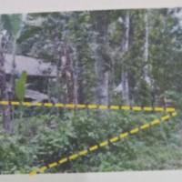 PT. BPR Prima Nadi: 1. 1 (satu) paket tanah pertanian SHM No.95&261, L 3.291 M2 & L 2.900 M2 di Ds. Keru dan Sedau, Narmada, Lobar