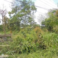1 e. BNI Kanwil BJM melelang Dua bidang tanah kosong SHM No.60 dan SHM No.80 Luas keseluruhan 13.900 m2, Sungai Cuka, Satui, Kotabaru