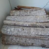 Kejari Bangli (21-11)2 : 1 (satu) paket kayu jenis lenggung, suren, nangi