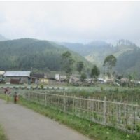 (BRI Slawi) Dilelang Sebid. T+ B SHM No.188 terletak di Ds. Sigedong, Kec.Bumijawa, Kab.Tegal luas 1.798 m2