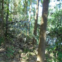 Mandiri RRCR Dps (16-12)1b : 1 (satu) bidang T/B sesuai SHM No.928 luas 5.940 m2 terletak di Ds. Panjianom, Kec. Sukasada, Kab. Buleleng
