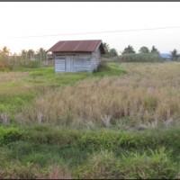 1 bidang tanah kosong luas 2.500 m2 di Desa/Kelurahan Sumber Harapan, Kecamatan Tanah Miring, Kabupaten Merauke