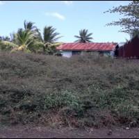 1 bidang tanah kosong luas 300 m2 di Kelurahan Mandala, Distrik Merauke, Kabupaten Merauke