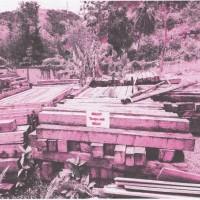 764 batang kayu olahan jenis Merbau tanpa SKSHH