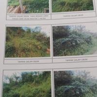 PN Singaraja (23-01) : 1 (satu) bidang Tanah sesuai SHM No. 86 luas 32.000 M², terletak di Ds. Galungan, Kec. Sawan, Kab. Buleleng