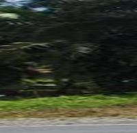 [BRISP4] 2a. Sebidang Tanah berikut turutannya, SHM. No. 451, Jalan Simpang Empat -Muara Kiawai,  Nagari Muara Kiawai , Kec Gunung Tuleh