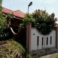 Lelang Eksekusi permohonan PT Bank BTPN, objek lelang : Tanah luas 1.007 m2 dan bangunan (SHM 00726  ) di Kuripan Kertoharjo, Pekalongan