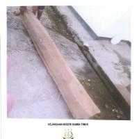 1. Kejari Sumba Timur - 1 (satu) batang kayu bulat dengan ukuran panjang 1,6m