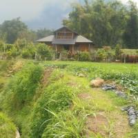 [PNM] 1. Sebidang Tanah seluas 4.354 M² dan turutan, SHM No. 00018, Nagari Batagak Kecamatan Sungai Pua Kabupaten Agam