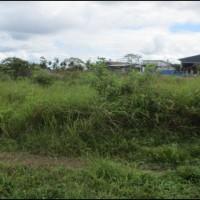 1 bidang tanah kosong luas 1.250 m2 di Kampung Persatuan, Distrik Mandobo, Kabupaten Boven Digoel