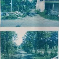 Bank Permata - 1 (satu) bidang tanah SHM No. 278 luas 3.040 M2 terletak di Desa Padangan, Kec. Ngantru, Kab. Tulungagung