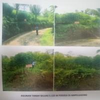 BRI Soehat - Tanah SHM No.1202, luas 5.125 m2, Desa Tirtomarto, Kec. Ampelgading, Kab. Malang