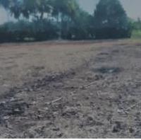 [BPRGebu] 4. Sebidang tanah pertanian seluas 2.931 m2, SHM No.00406, di Nagari Geragahan  Kecamatan Lubuk Basung Kab.Agam