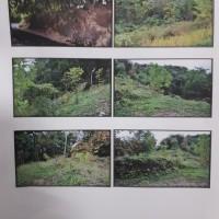 BRI Pwt: sebidang tanah SHM No. 00478 luas 1.972 m2 di Desa Banjarsari Kulon Kec. Sumbang Kab. Banyumas