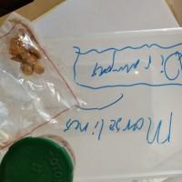 Kejari Sambas : 14. 1 (satu) buah wadah plastik tutup berwarna hijau  didalamnya terdapat bongkahan & butiran emas +/- 27gr