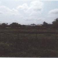 1 bidang tanah kosong luas 120 m2 di Desa/Kelurahan Jaifuri, Kecamatan Skanto, Kabupaten Keerom