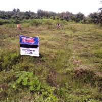 1 (satu) bidang tanah kosong luas 10.000 m2 di Kelurahan Jaifuri, Kecamatan Skanto, Kabupaten Keerom