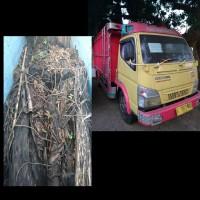 (Kejari Jepara) 4. 1 (satu) unit Truck Colt Diesel dan 25 glondong kayu sonokeling
