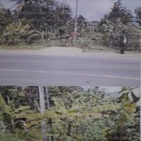 Mandiri 3 - Sebidang tanah luas 506 m² SHM no.0280 di Jalan Lintas Sumatera, Desa Campang Tiga, Kec. Sidomulyo, Lamsel