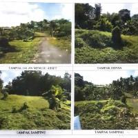 1 bidang tanah kosong SHM 4587 luas 100 m2 di Kabupaten Gianyar (Mandiri Taspen)