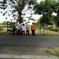 BRI BWI 1c) Sehamparan tanah tersebut dalam SHM No. 2579 dan SHM No. 2.742 terletak di Desa/Kel. Kedungrejo, Kec. Muncar, Kab. Banyuwangi