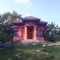 Sebidang tanah luas 349m2, dan bangunan SHM. No. 00409, terletak di Kec. Ponrang Selatan, Kab. Luwu