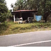 BNI Rantau Prapat : f. Sebidang tanah seluas 1.446 m2 berikut Bangunan dengan Sertipikat Hak Milik No. 2305 di Desa Binanga Dua