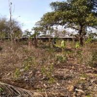 PNM Tulungagung - Sebidang Tanah Pekarangan SHM No. 283, luas 2.750 m2, terletak di Desa Sumberjo, Kec Kademangan, Kab Blitar