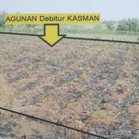 KSPPS Yaumi:Tanah SHM 639 Lt.3320 m2 di Ds Badegan,Kec Margorejo,Kab Pati