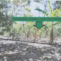 KSPPS Yaumi:Tanah SHM 720 Lt.3240 m2 di Ds Purworejo,Kec.Margoyoso,Kab Pati