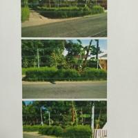 BRI Banjarngr: Sebidang tanah, SHM No.167, luas 200 m2, di Desa Kecitran, Kecamatan Purwareja Klampok, Kabupaten Banjarnegara