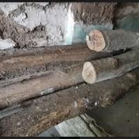 Kejari Sragen_2: 5 (lima) batang kayu berbagai ukuran tidak dilengkapi surat keterangan yang sah kondisi apa adanya