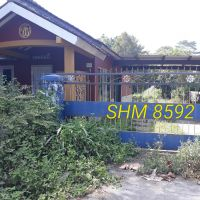 Lot 2 BPR Danagung Ramulti, 1 bidang tanah sawah berikut bangunan dan segala sesuatu di atasnya SHM 8592 L 767 m2 di Ngemplak, Sleman