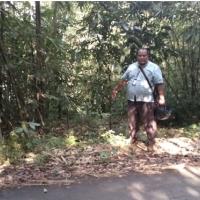 [PNM PWT] tanah, SHM No. 00082, LT 2152m2, terletak di Ds Ganggawang, Kec Salem, Kab Brebes