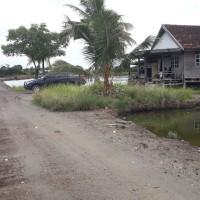 PT. BRI Palopo: Sebidang tanah seluas 31.694 m2, sesuai SHM Nomor 58, terletak di Kec. Bua, Kabupaten Luwu