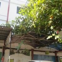 KURATOR ABU TOURS-4 : 1 (satu) bidang tanah luas 122 m2, dan bangunan diatasnya, di Jln. Kakaktua/Padjonga Dg.Alle No.18D, Makassar