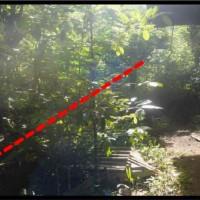 PT. PNM: Sebidang tanah luas 395 m2, sesuai SHM No. 216, terletak di Kec. Gandangbatu Sillanan, Kabupaten Tana Toraja