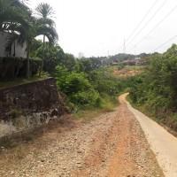 Dijual Sebidang tanah seluas 1.773 m2 di Kelurahan Pasir Putih Muara Bungo SHM No. 6423 an LD Pasaribu