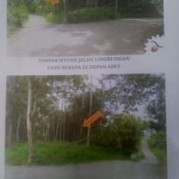 1 bidang tanah dengan total luas 19.630 m2 di Lampung Selatan