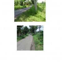 Kurator PT. Kertas Leces : Sebidang tanah di Desa Sumberkedawung,Kec.Leces Kab. Probolinggo, luas 40.910 m2, Sertifikat Hak Pakai No. 00024