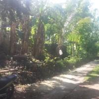 BPR Mataram Mitra Manunggal: Tanah & bangunan, SHM no. 00697, luas 1.540 M2, terletak di Desa/Kel. Jetis, Kec. Saptosari, Kab. Gunungkid
